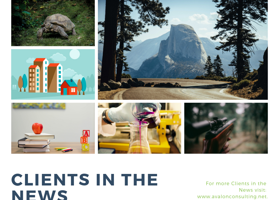 Clients in the News–March 2019
